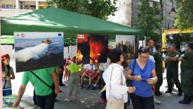 2 Public campaign-Protect Macedonian forest from forest fires